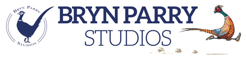 Bryn Parry Studioes Logo
